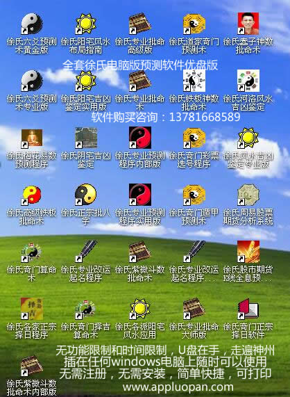 徐氏优盘版电脑算命软件
